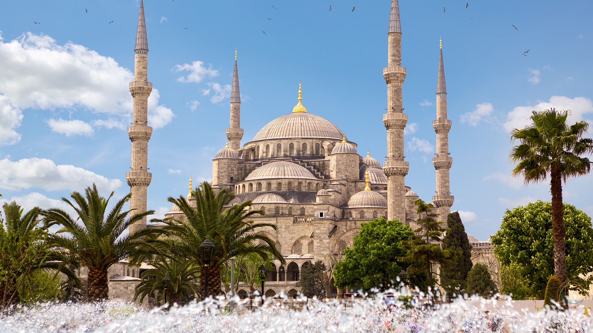 تأمين فلل وقصور في تركيا